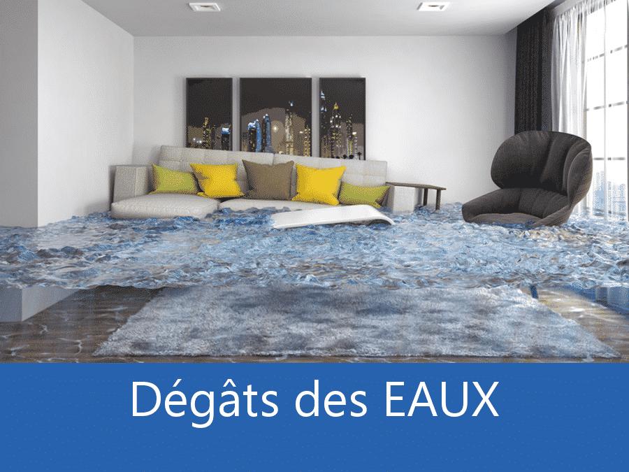 dégâts des eaux 69, expert inondation Lyon, contre expertise inondation Villefranche, expert dégâts de eaux Rhone,